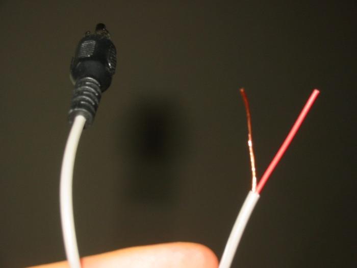 Skinned RCA cable © 2005 Joe Goldberg
